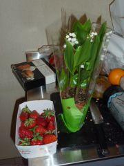 Fleurs et fruits 009.JPG