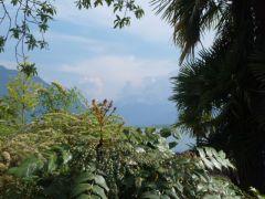 Divers  Montreux sous le soleil et armoire remplie! 001.JPG