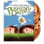 pushing daisies.jpg