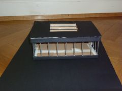 cage 001.JPG